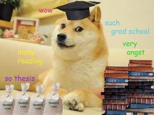 Grad School Doge by toribeth.com