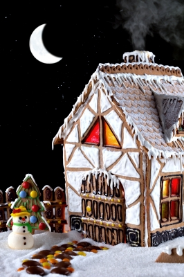 The coolest gingerbread house ever. Photo by: Serge Bertasius Photography